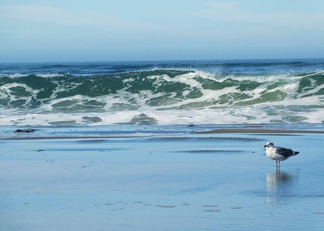 Questa spiaggia è a circa cinque minuti a piedi o 1 minuto in auto
