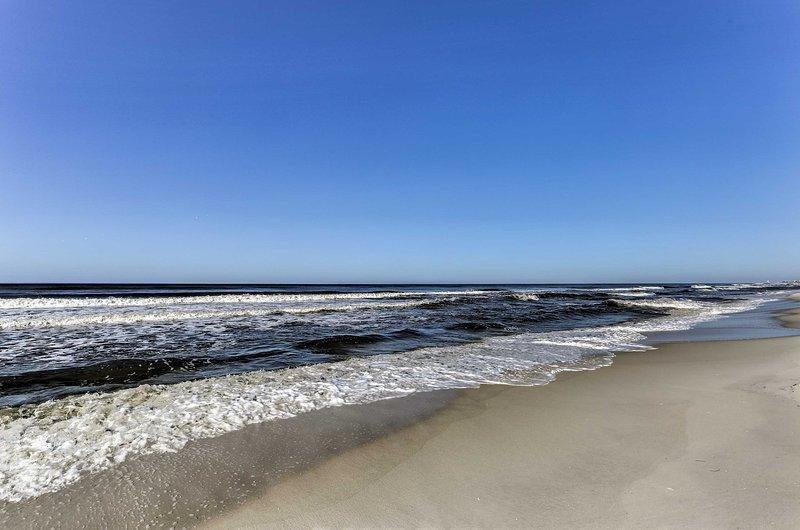 Juega en las cálidas aguas del Golfo de México.