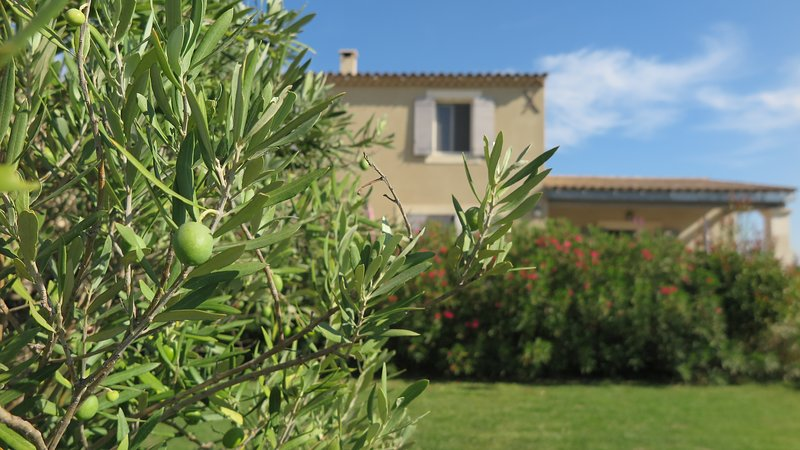 GITE LISIANTHUS LE petit luberon, holiday rental in Cabrieres-d'Avignon