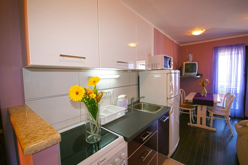 Holiday home 182010 - Holiday apartment 207339, location de vacances à Ravni