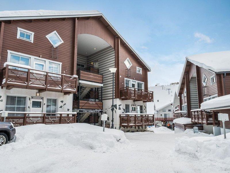 Levinkolmio c5, holiday rental in Kittilä