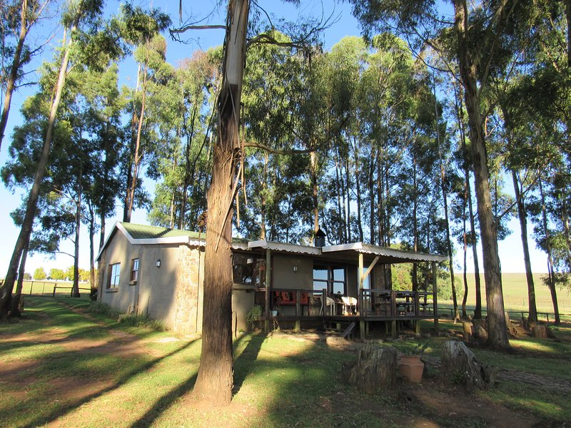 TroutWoods Cottage, vacation rental in Dullstroom