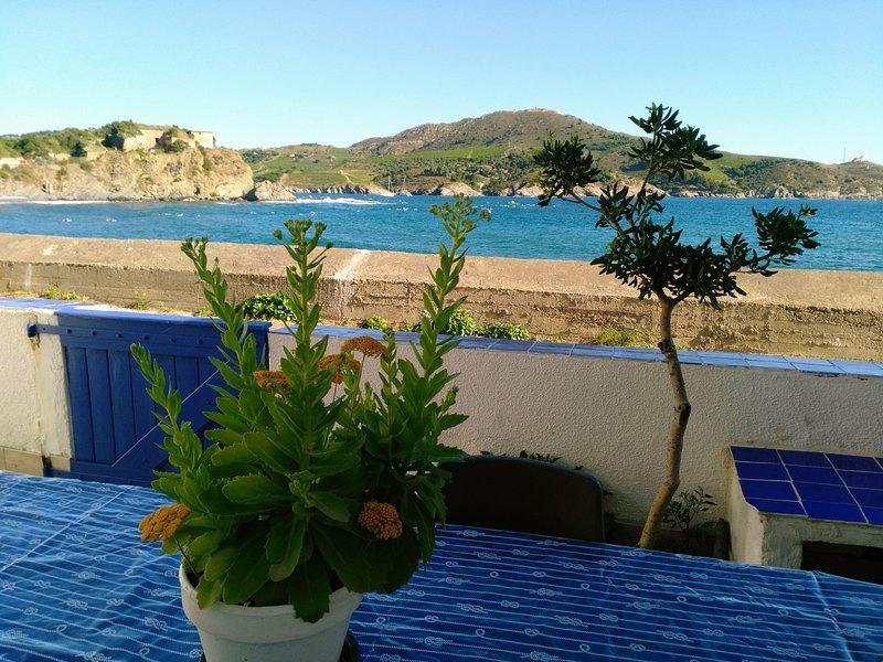 Loue Paulilles petite maison pêcheur pleins pieds, alquiler de vacaciones en Port-Vendres