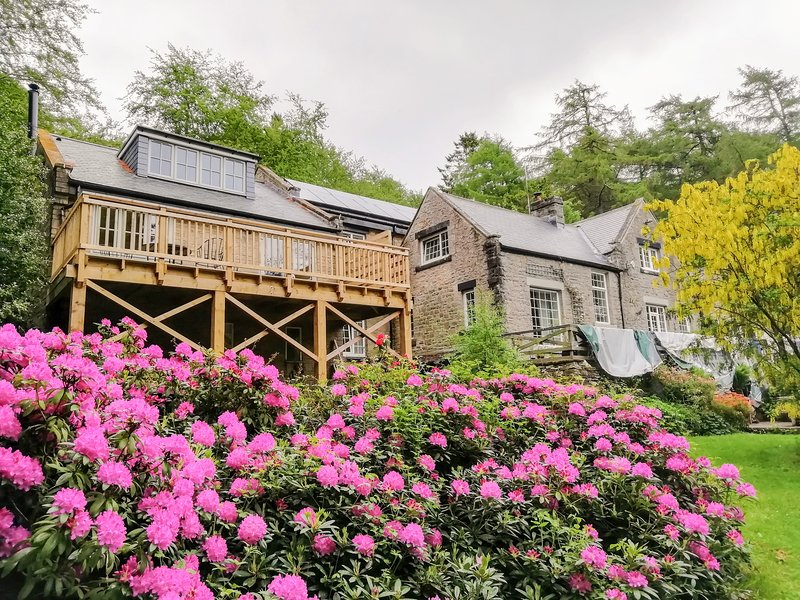 Folly Lodge, Middleton-In-Teesdale, holiday rental in Barnard Castle