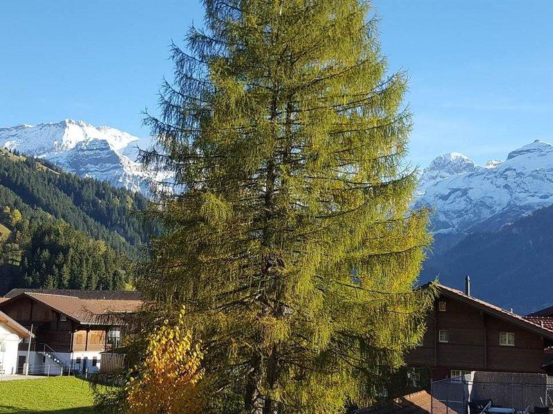 Oberriedstrasse 5, location de vacances à Matten bei Interlaken