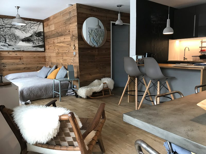 Modern Ski Apartment village center for 6 nr slope., vacation rental in La Clusaz
