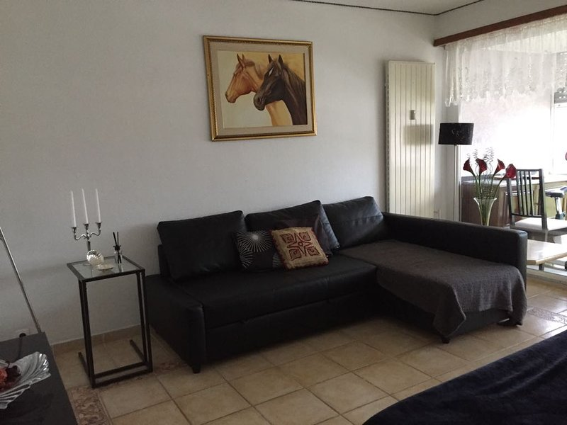 Beautiful apartment with terrace, alquiler vacacional en Lorrach