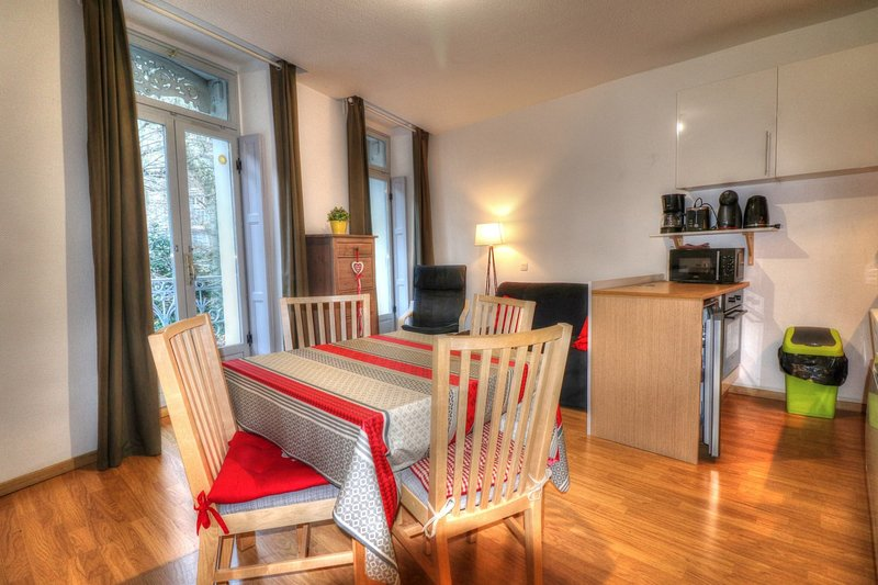 Apartment - 200 m from the slopes, holiday rental in Saint-Mamet