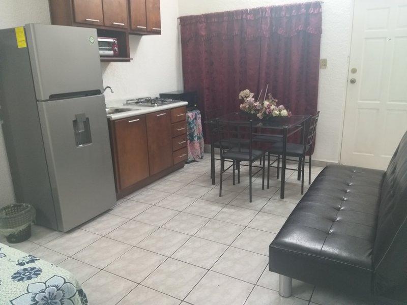 Hermoso studio doble con cocina , desayunador y sofacama, holiday rental in Tampico
