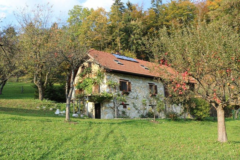PLAN B apartment; active tranquility, alquiler vacacional en Kamnik