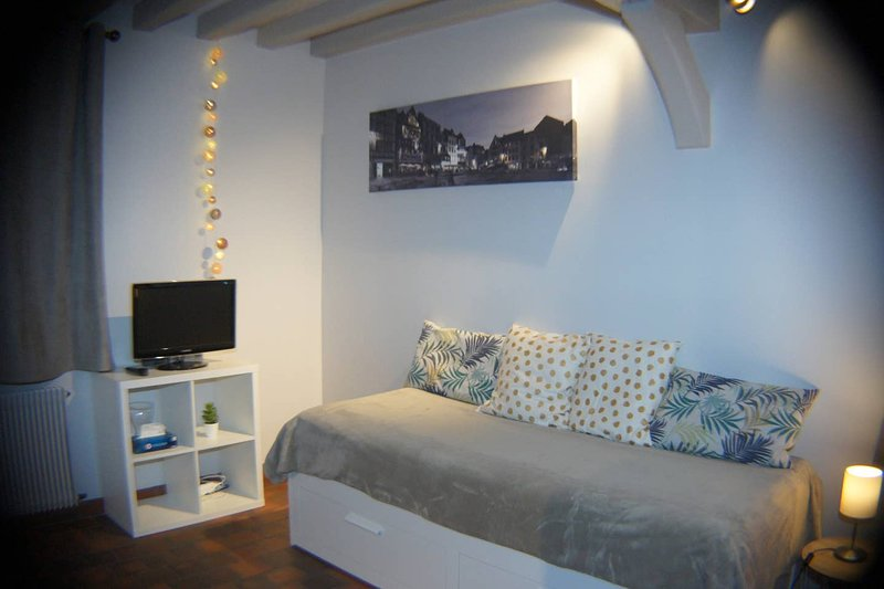 Studio 'la grenouillette' 2 couchages, vacation rental in Martainville-Epreville