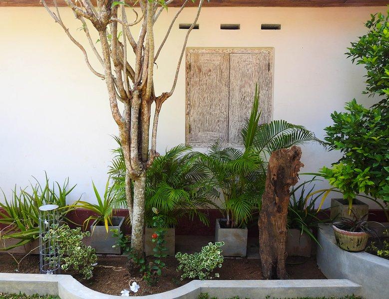 De aangelegde tuin