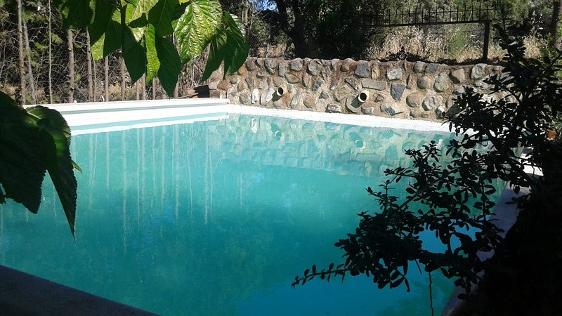 Amazing villa with swimming-pool, vacation rental in El Castillo de las Guardas