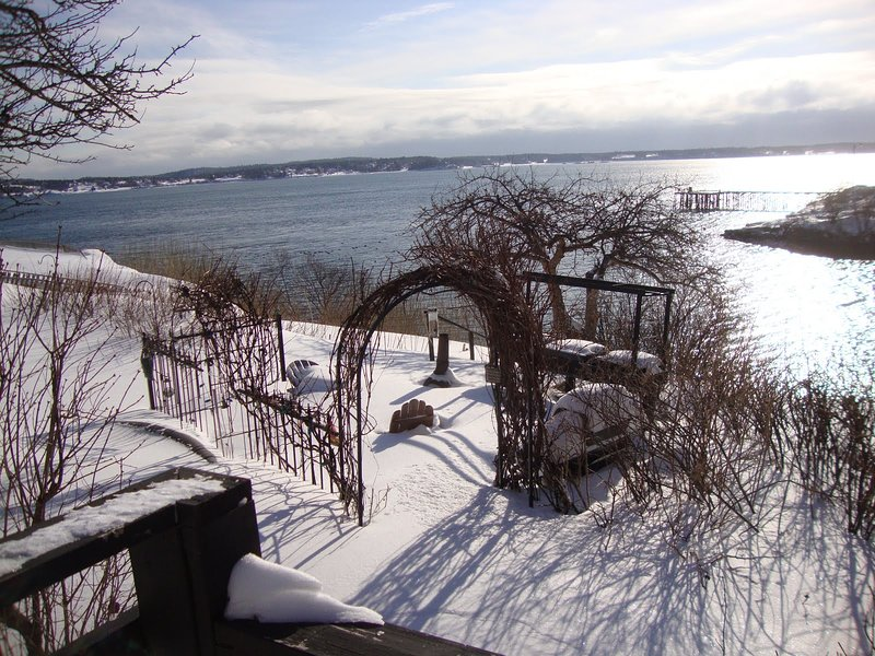 The Cottage at Shackford Cove, vacation rental in Eastport