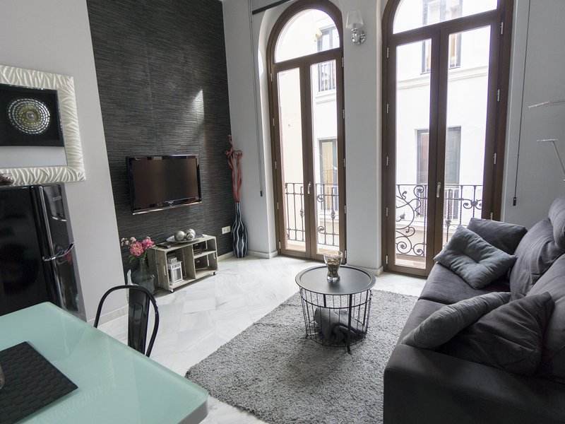 RentalSevilla Luxury Duplex close to the Cathedral, vacation rental in La Campana