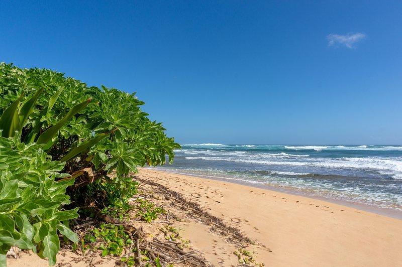 Agua, mar, aire libre, naturaleza, mar
