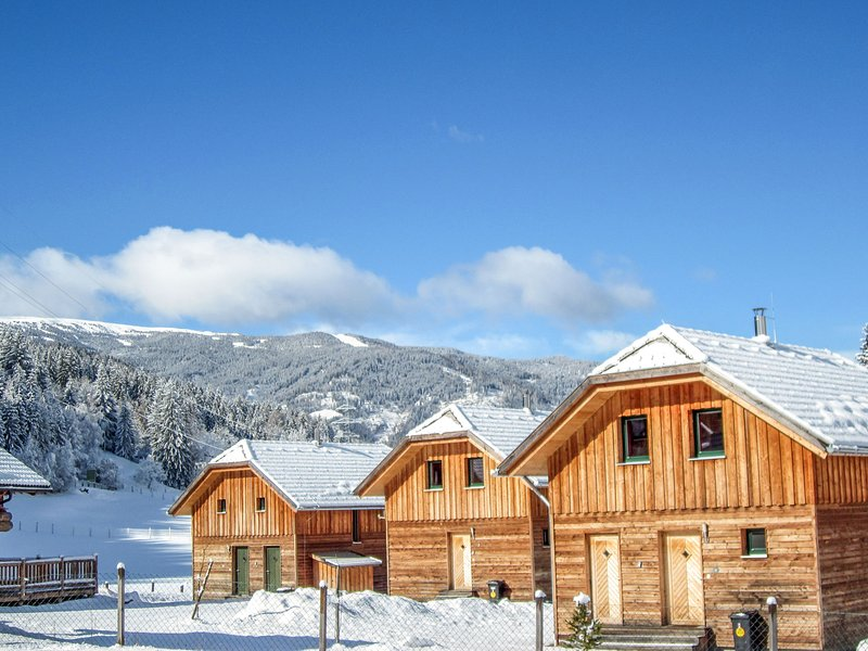 Woody Park, holiday rental in St. Lambrecht