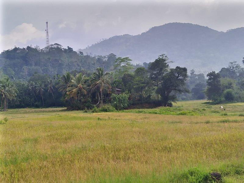 Travellers choice - sinharaja, vacation rental in Hiniduma
