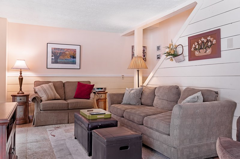 Cozy dog-friendly home w/ deck, fireplace, & forest views - very kid friendly!, location de vacances à Silver Lake