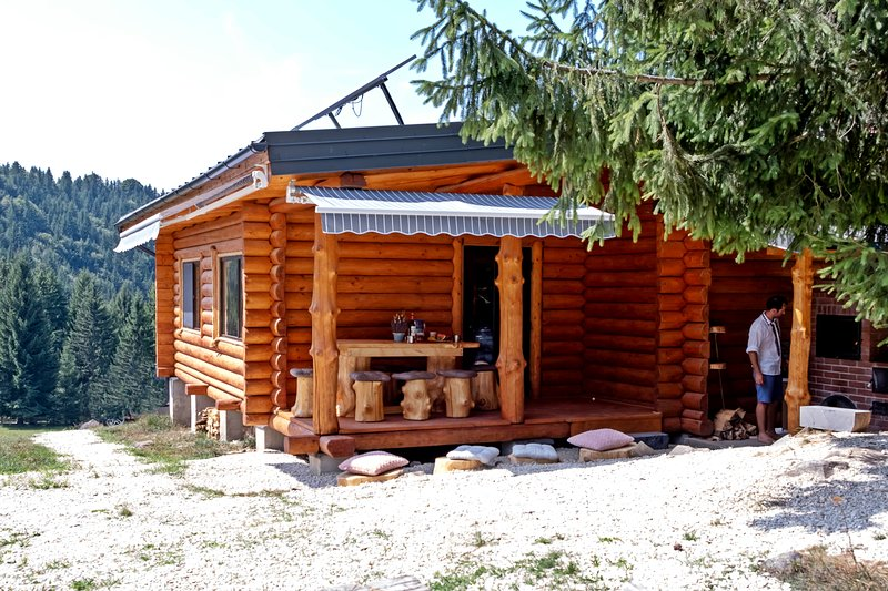 Cabana Paulownia, holiday rental in Breb