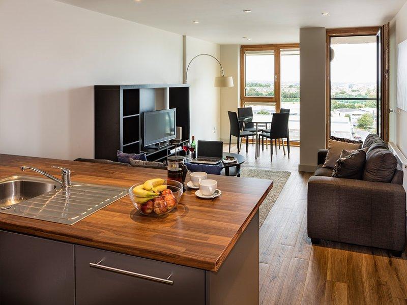 DUBLIN MOUNTAINS VIEWS-SANDYFORD 2BR-2BA APT, vacation rental in Bray