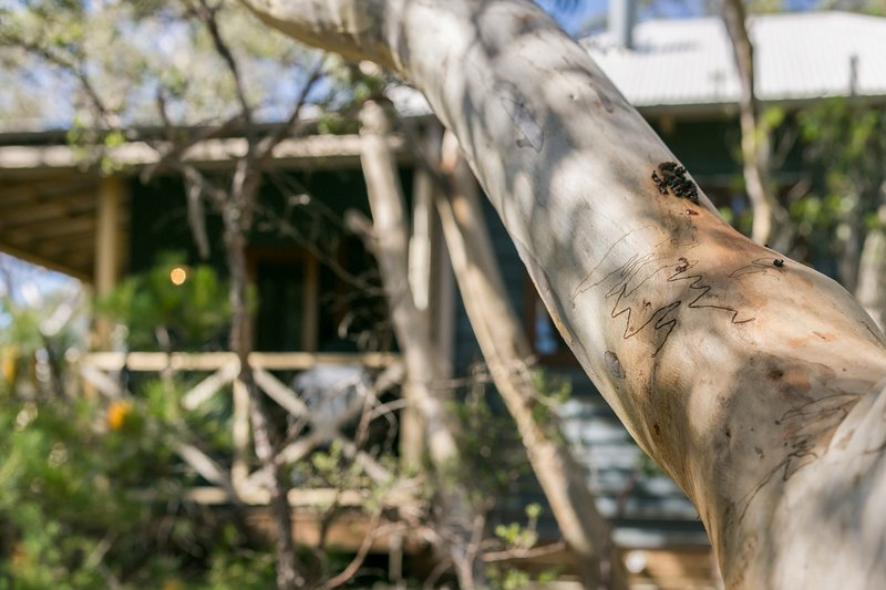 Scribbly Gum, holiday rental in Leura