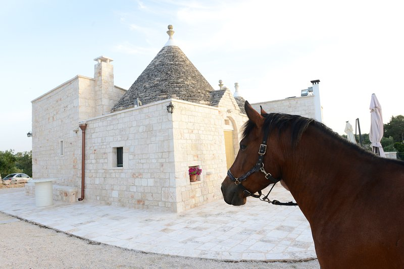 Tenuta Semeraro 'Uliveto', holiday rental in Calabrese