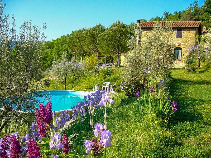 Il Fienile, vacation rental in San Polo in Chianti