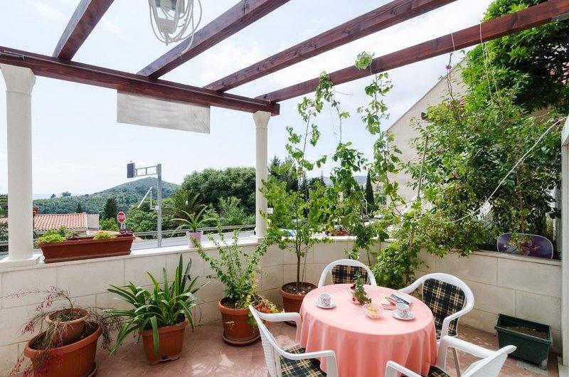 Apartments Mamma Mia- Superior One Bedroom Apartment with Terrace, location de vacances à Srebreno