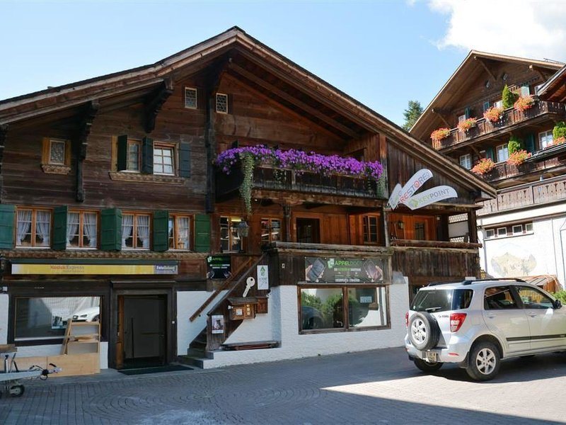 Le Vieux Chalet, vacation rental in Saanen