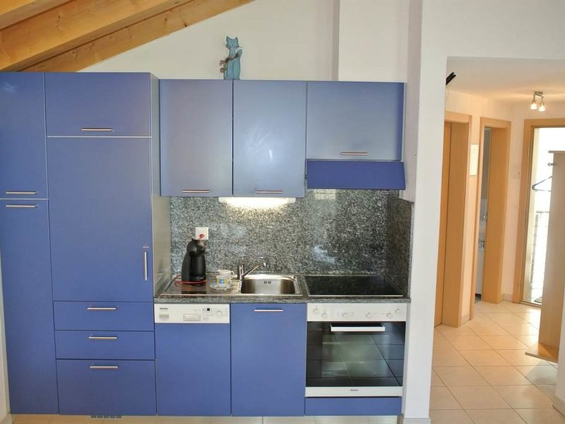 Haus  Artemis, vacation rental in Saas-Grund