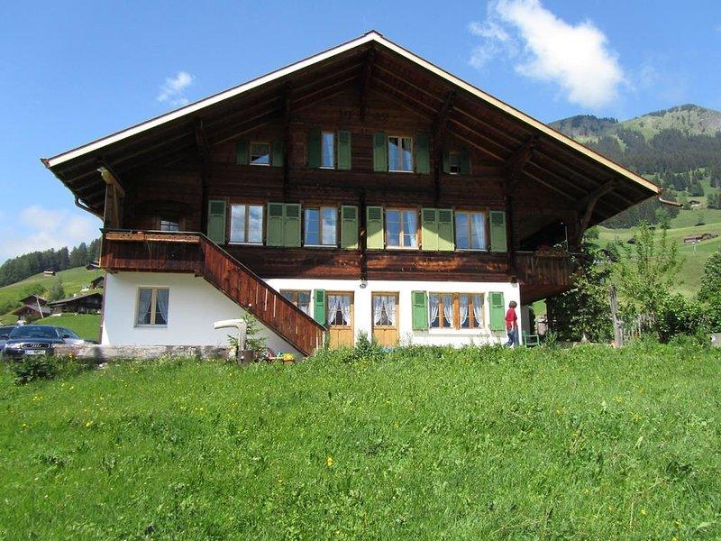 Chalet Pletschen, vacation rental in Lenk im Simmental