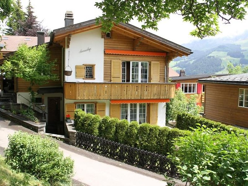 Sunneschyn, vacation rental in Adelboden