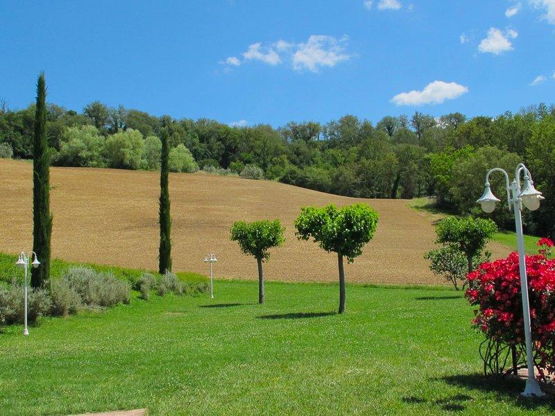Lavanda, holiday rental in San Giovanni Valdarno