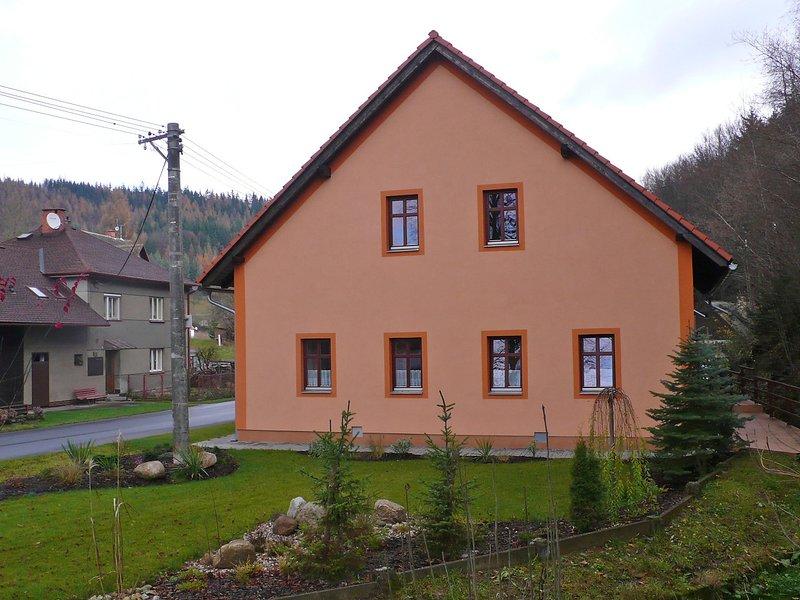 Petrovice, holiday rental in Orlicke Zahori