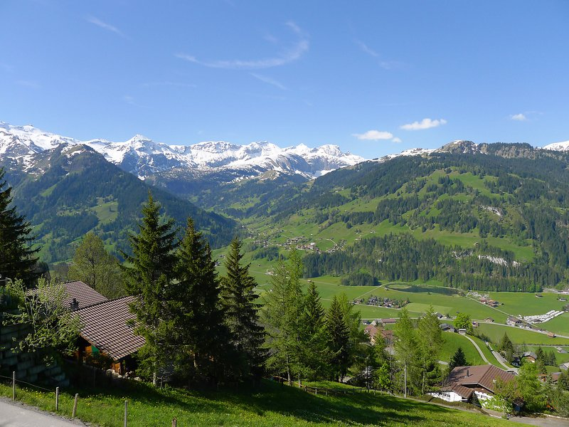 Chalet Marianne, holiday rental in Canton of Bern