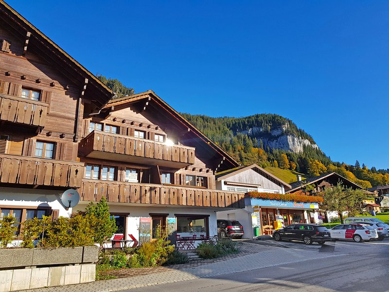 Chalet Burgfeld, holiday rental in Sigriswil