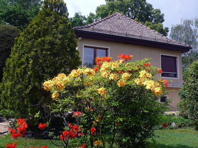 5, chemin de la Pralay, vacation rental in Saint-Genis-Pouilly