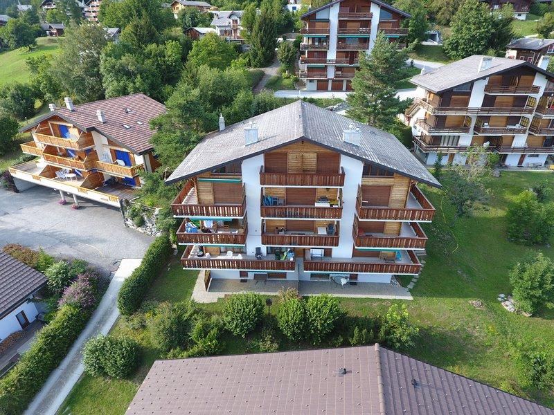 Plein Soleil A 10, holiday rental in Ovronnaz