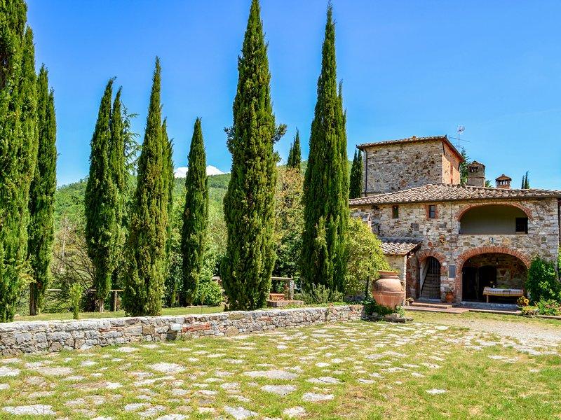 Il Molino, holiday rental in Gaiole in Chianti