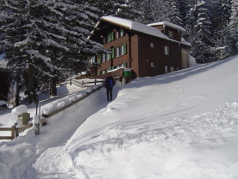 Chalet Sonnenheim, vacation rental in Adelboden