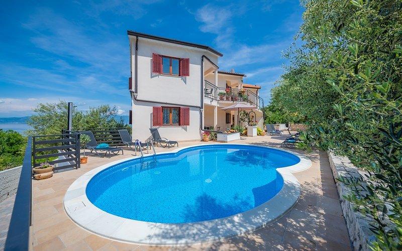 Apt Lara 5 - Pool, Sauna, Hot Tub, Terrace, Sea View, BBQ Grill, holiday rental in Drenje