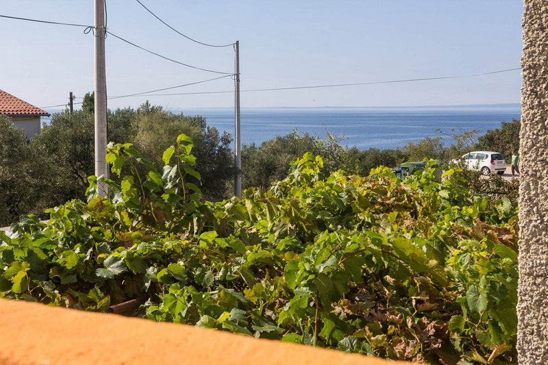 Holiday home 176397 - Guest room 194235, vacation rental in Miholascica