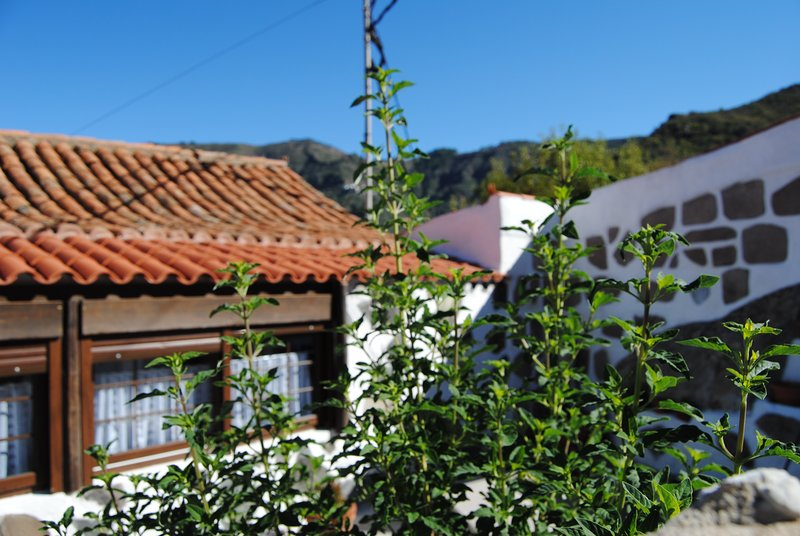 Casa Campo - Centro Gran Canaria, holiday rental in Tejeda