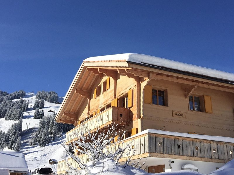 Butterfly, holiday rental in Achsete