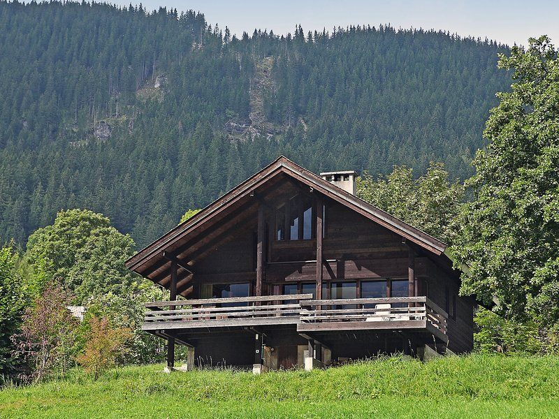 Meister, holiday rental in Canton of Bern