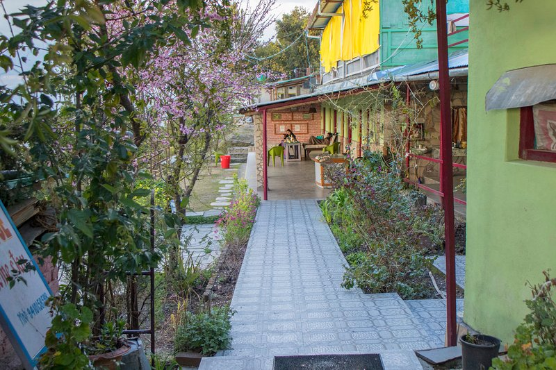 Pilgrims Jungle house Homestay, vacation rental in Almora District