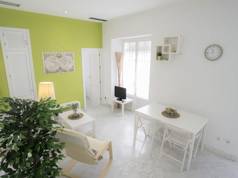 RentalSevilla Charming apartment next to the Giralda, holiday rental in La Campana