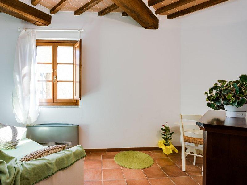 Borgo di Gaiole, vacation rental in Barbischio