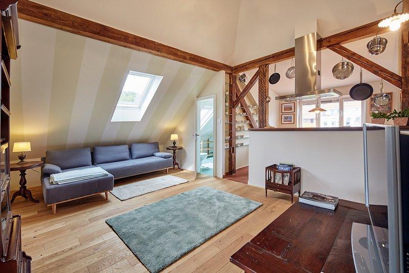 Spa Apartments Breza - Upper Floor Apartment, vacation rental in Medvode